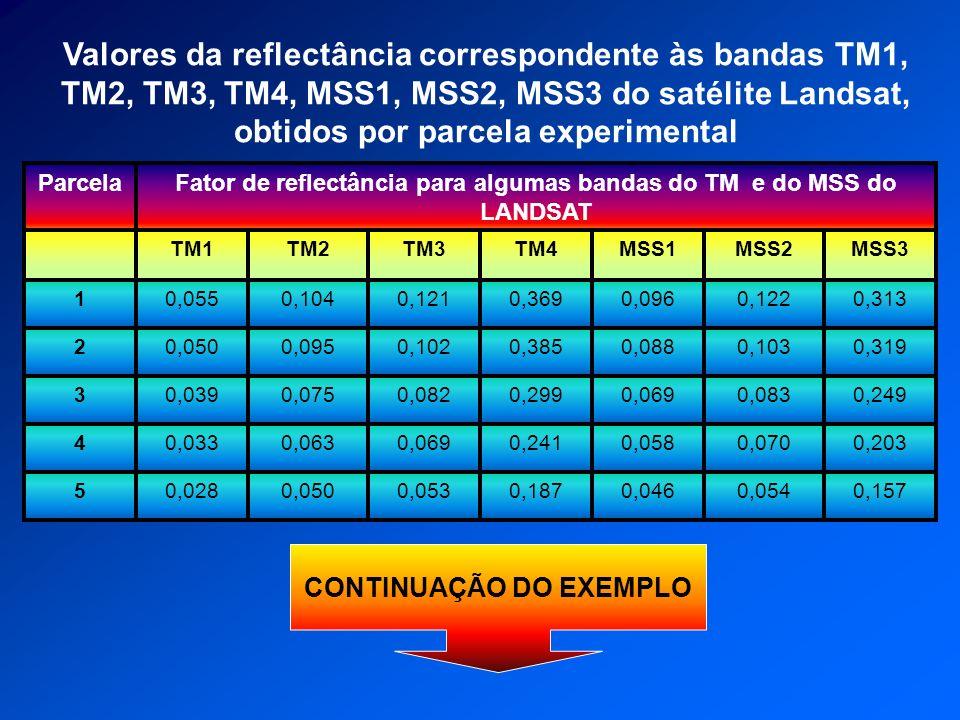 5 4 3 2 1 Parcela 0,1570,0540,0460,1870,0530,0500,028 0,063 0,075 0,095 0,104 TM2 Fator de reflectância para algumas bandas do TM e do MSS do LANDSAT