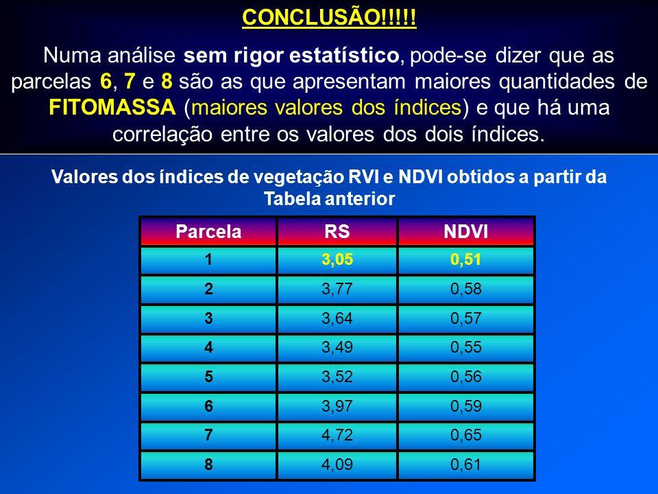 0,513,051 0,583,772 0,573,643 0,553,494 0,563,525 0,593,976 0,654,727 0,614,098 ParcelaNDVIRS Valores dos índices de vegetação RVI e NDVI obtidos a pa