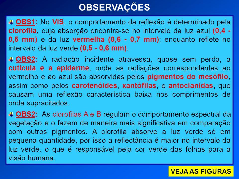 OBS1: No VIS, o comportamento da reflexão é determinado pela clorofila, cuja absorção encontra-se no intervalo da luz azul (0,4 - 0,5 mm) e da luz ver
