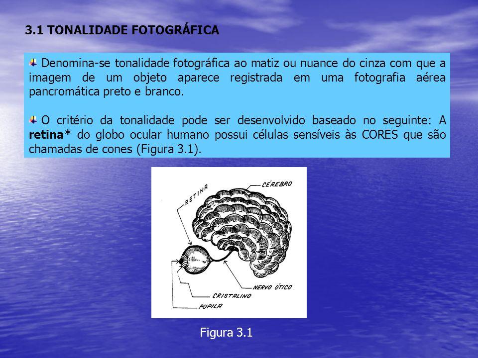 3.1 TONALIDADE FOTOGRÁFICA Denomina-se tonalidade fotográfica ao matiz ou nuance do cinza com que a imagem de um objeto aparece registrada em uma foto