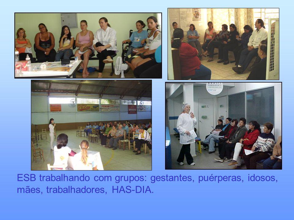 ESB trabalhando com grupos: gestantes, puérperas, idosos, mães, trabalhadores, HAS-DIA.