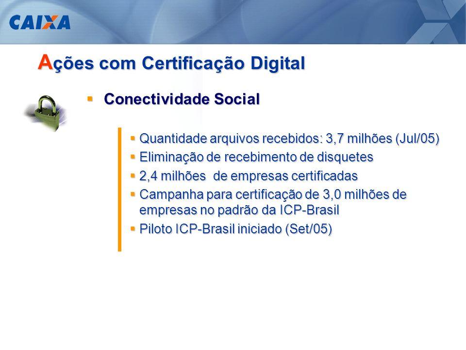 A ICP-Brasil R esumindo...