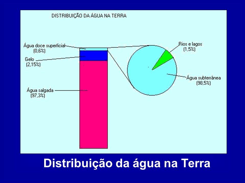 Regiã o Porcentagem das águas doce de superfície Porcentagem da população Norte68,5 Centro-Oeste Nordeste Sudeste Sul 15,7 3,3 6,6 6,5 100 Total Distribuição das águas doce de superfície e da população no Brasil 6,83 6,42 28,94 42,73 15,07 100