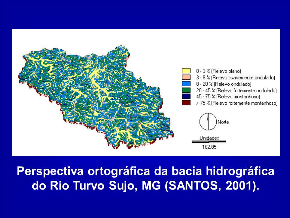 Perspectiva ortográfica da bacia hidrográfica do Rio Turvo Sujo, MG (SANTOS, 2001).