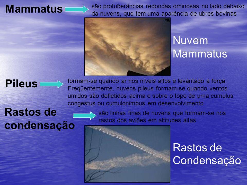 são protuberâncias redondas ominosas no lado debaixo da nuvens, que tem uma aparência de ubres bovinas Mammatus Nuvem Mammatus formam-se quando ar nos