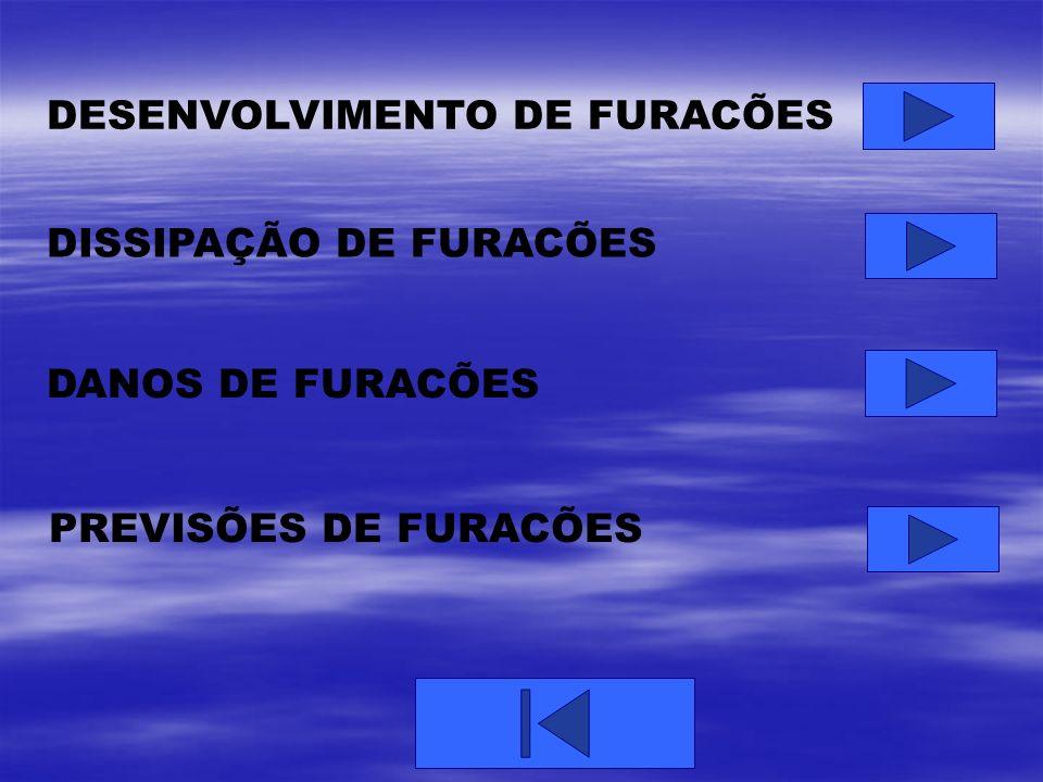 DESENVOLVIMENTO DE FURACÕES DISSIPAÇÃO DE FURACÕES DANOS DE FURACÕES PREVISÕES DE FURACÕES