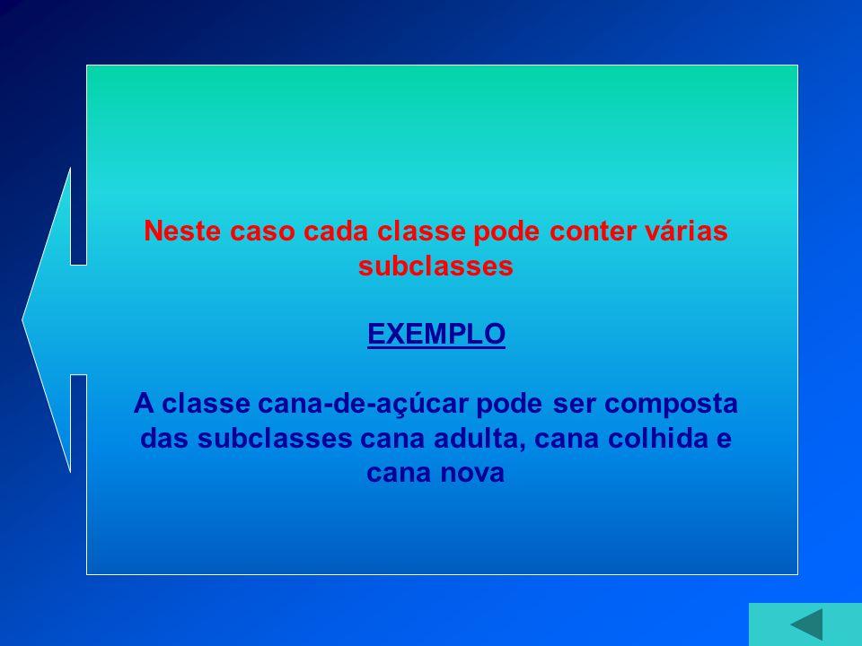Neste caso cada classe pode conter várias subclasses EXEMPLO A classe cana-de-açúcar pode ser composta das subclasses cana adulta, cana colhida e cana nova