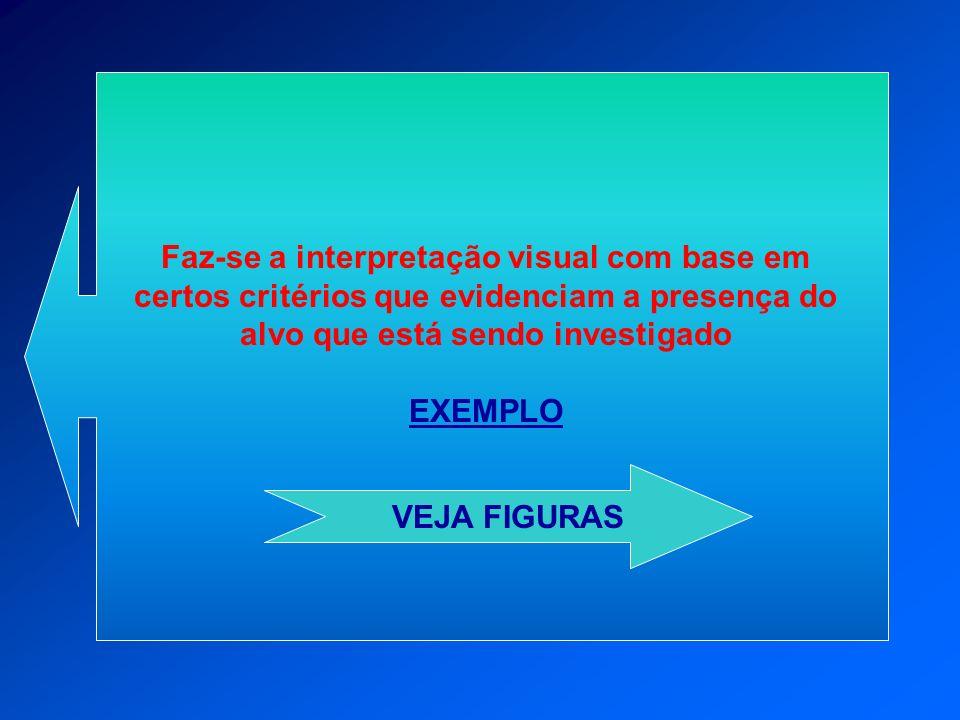 Faz-se a interpretação visual com base em certos critérios que evidenciam a presença do alvo que está sendo investigado EXEMPLO VEJA FIGURAS