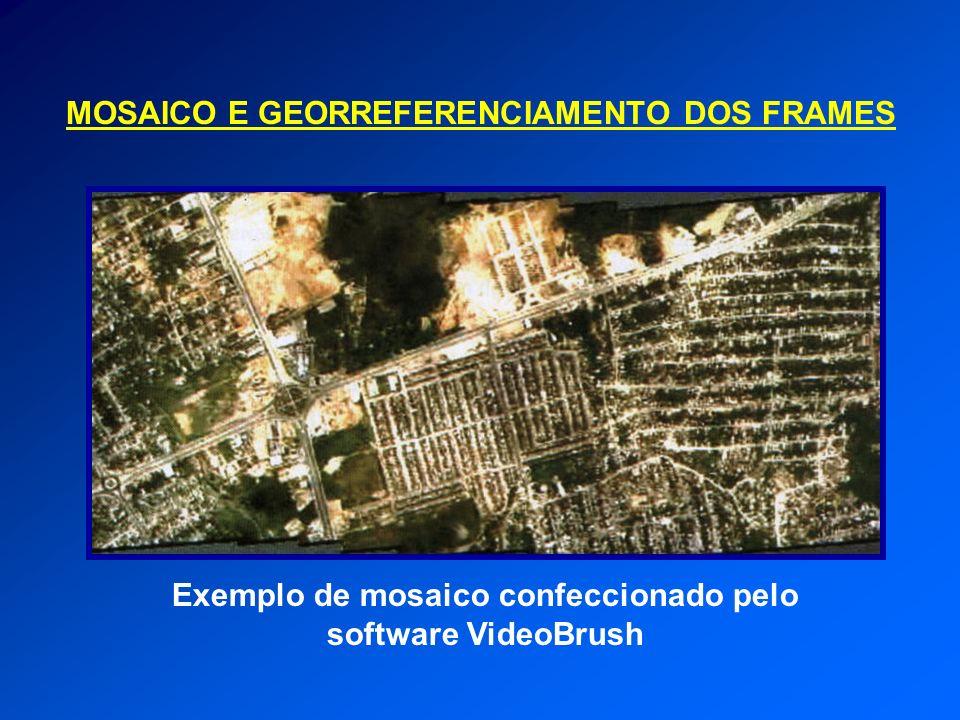 Exemplo de mosaico confeccionado pelo software VideoBrush MOSAICO E GEORREFERENCIAMENTO DOS FRAMES