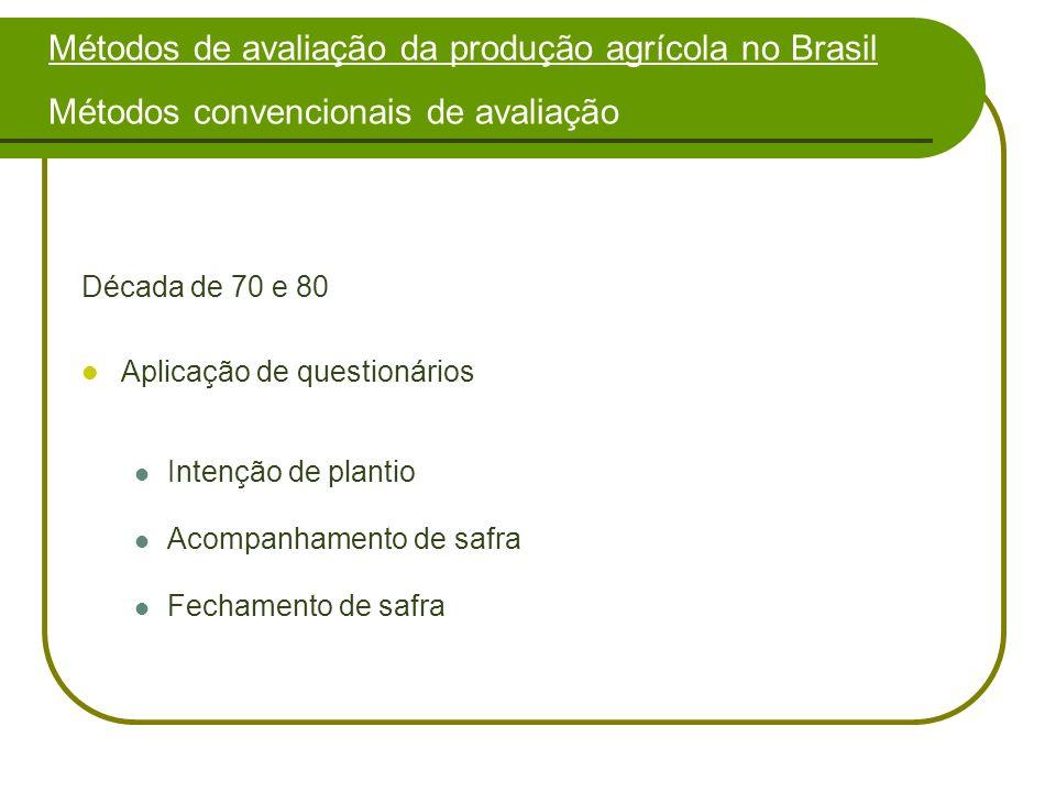 Análise dos resultados do sul do Maranhão Tipos de erros nos resultados apresentados Na primeira opção, existiam os problemas referentes às propriedades que são divididas em duas ou mais áreas.
