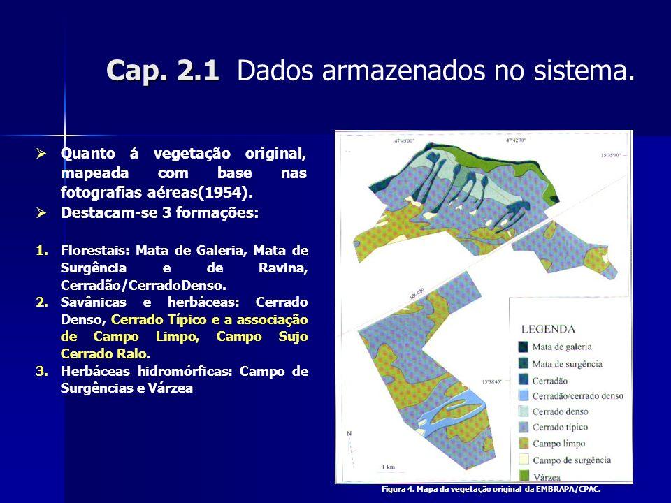 Cap. 2.1 Cap. 2.1 Dados armazenados no sistema. Quanto á vegetação original, mapeada com base nas fotografias aéreas(1954). Destacam-se 3 formações: 1