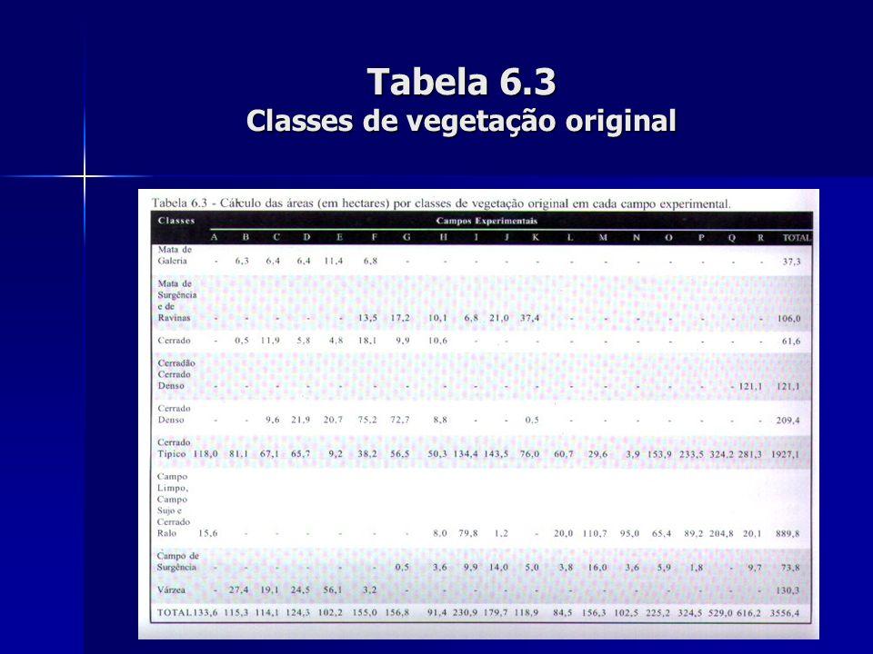 Tabela 6.3 Classes de vegetação original