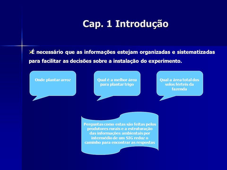 Cap. 1Introdução Cap. 1 Introdução É necessário que as informações estejam organizadas e sistematizadas para facilitar as decisões sobre a instalação