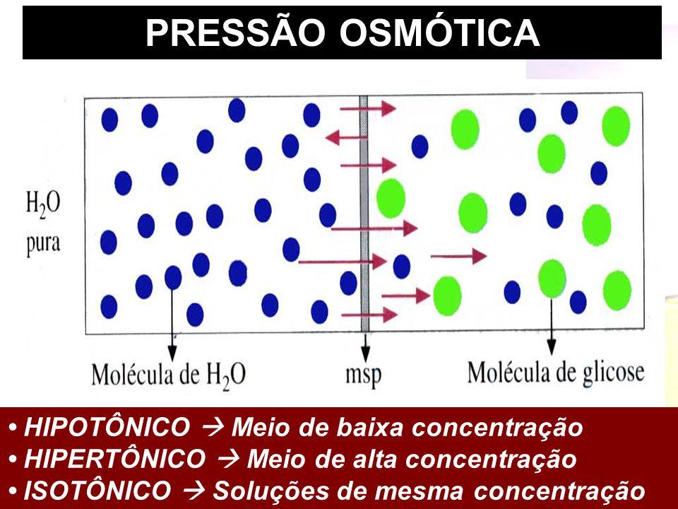Prof. Sidnei PRESSÃO OSMÓTICA HIPOTÔNICO Meio de baixa concentração HIPERTÔNICO Meio de alta concentração ISOTÔNICO Soluções de mesma concentração