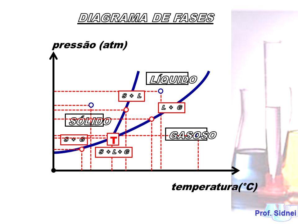 Prof. Sidnei pressão (atm) temperatura(°C) T