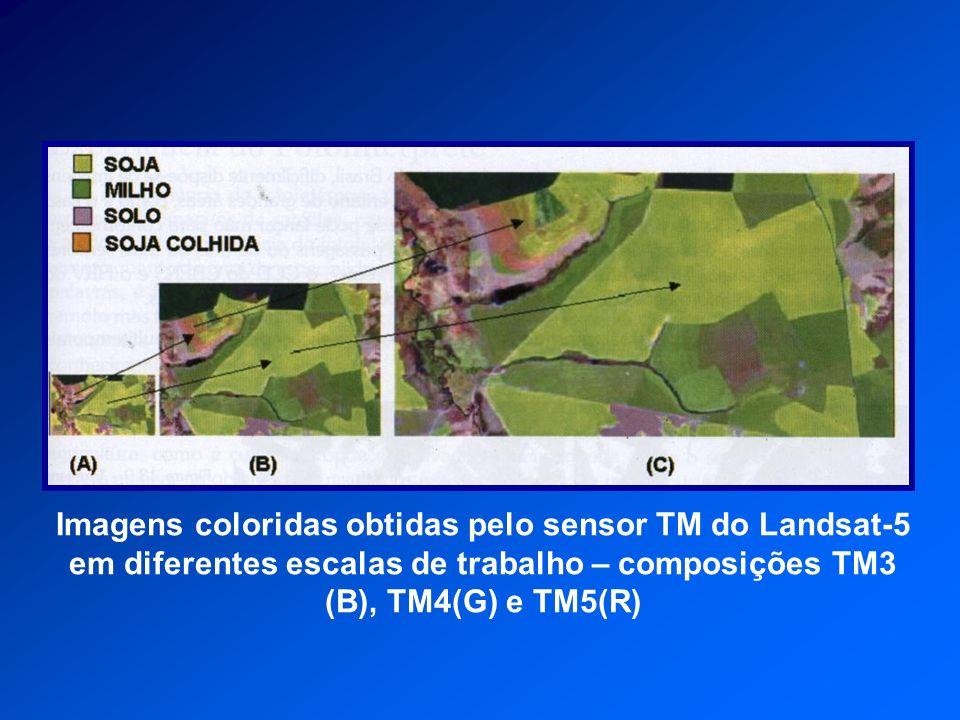 Imagens coloridas obtidas pelo sensor TM do Landsat-5 em diferentes escalas de trabalho – composições TM3 (B), TM4(G) e TM5(R)