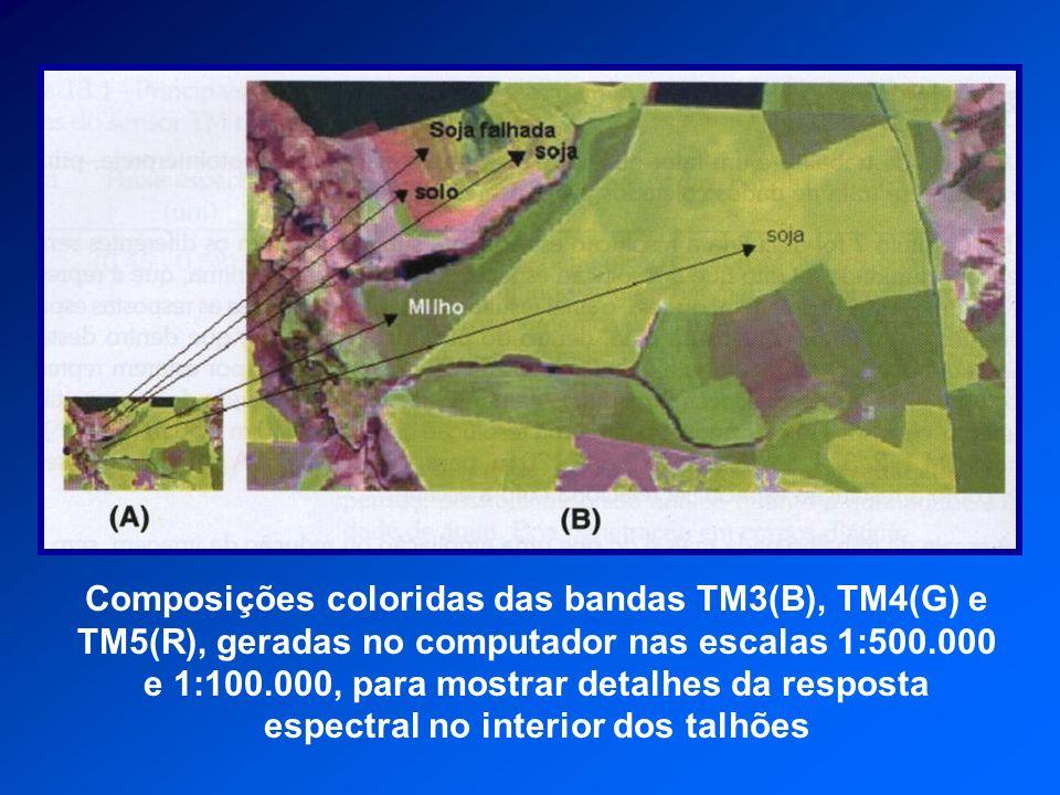 Composições coloridas das bandas TM3(B), TM4(G) e TM5(R), geradas no computador nas escalas 1:500.000 e 1:100.000, para mostrar detalhes da resposta e