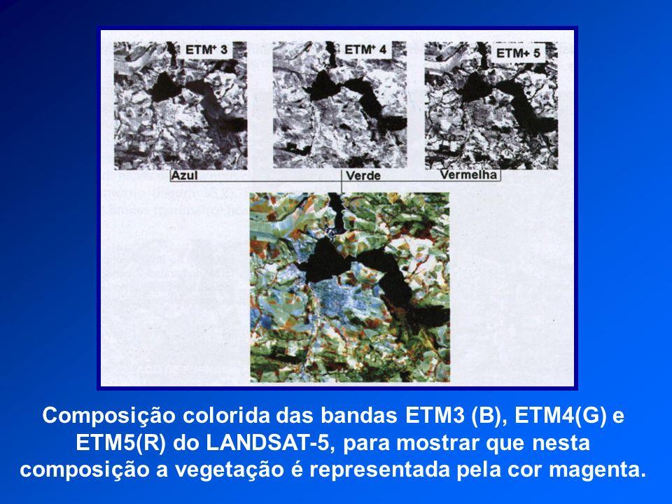 Composição colorida das bandas ETM3 (B), ETM4(G) e ETM5(R) do LANDSAT-5, para mostrar que nesta composição a vegetação é representada pela cor magenta