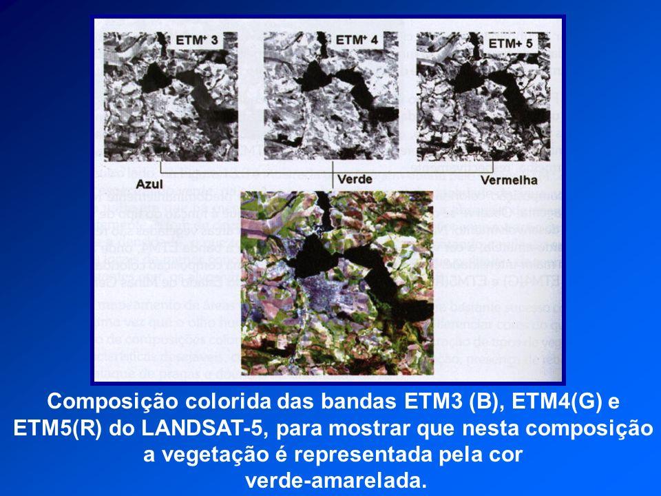 Composição colorida das bandas ETM3 (B), ETM4(G) e ETM5(R) do LANDSAT-5, para mostrar que nesta composição a vegetação é representada pela cor verde-a