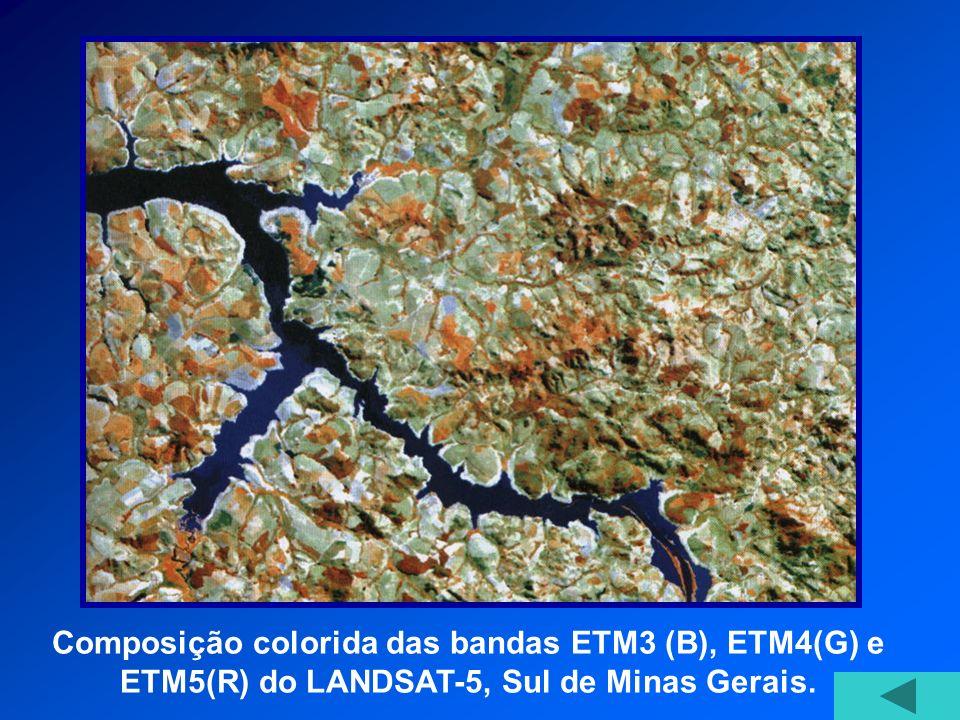 Composição colorida das bandas ETM3 (B), ETM4(G) e ETM5(R) do LANDSAT-5, Sul de Minas Gerais.