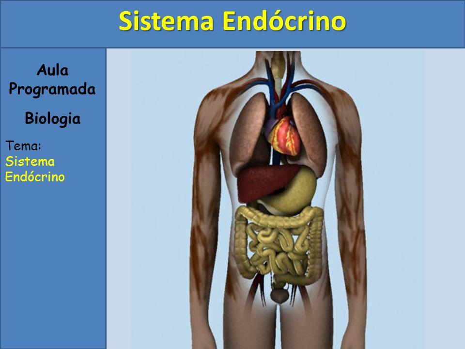 Aula Programada Biologia Tema: Sistema Endócrino
