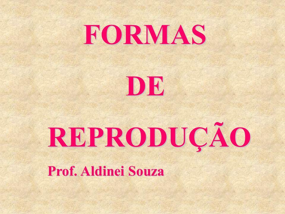 FORMAS FORMAS DE DEREPRODUÇÃO Prof. Aldinei Souza