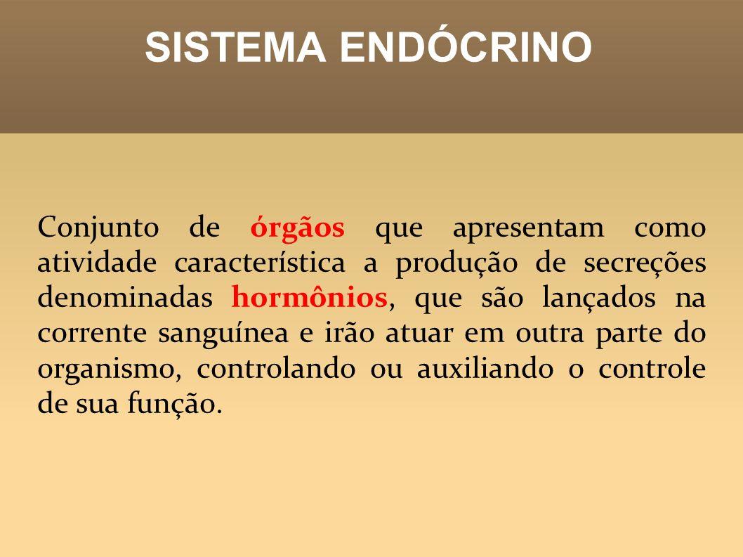 SISTEMA ENDÓCRINO Conjunto de órgãos que apresentam como atividade característica a produção de secreções denominadas hormônios, que são lançados na c