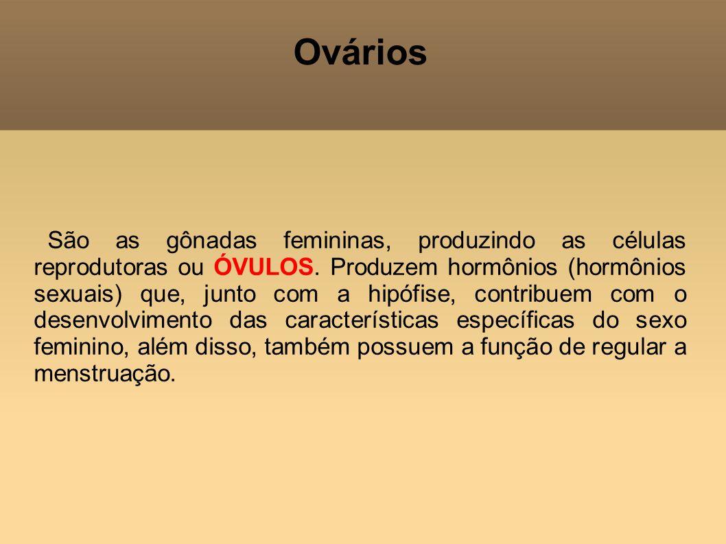 Ovários São as gônadas femininas, produzindo as células reprodutoras ou ÓVULOS. Produzem hormônios (hormônios sexuais) que, junto com a hipófise, cont