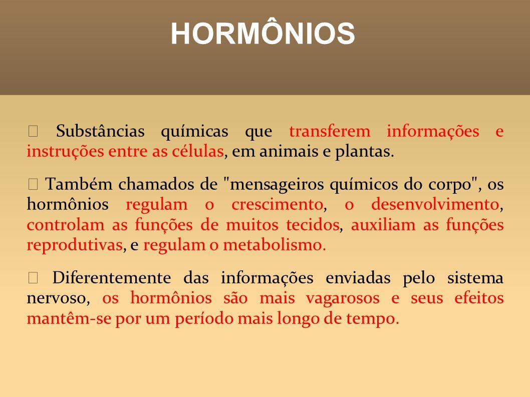 Hormônios sintetizados pela HIPÓFISE H ormônio estimulante do crescimento (HEC): promove o crescimento do organismo; Hormônio antidiurético (ADH): atua no rim, reduz a perda de água pela urina, efetuando o controle hídrico; este hormônio é produzido no hipotálamo, a hipófise armazena e libera na corrente sanguínea.