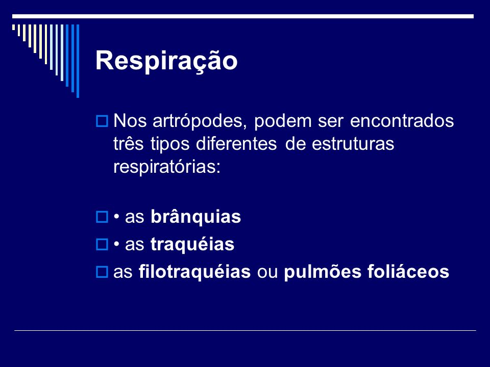Respiração Nos artrópodes, podem ser encontrados três tipos diferentes de estruturas respiratórias: as brânquias as traquéias as filotraquéias ou pulm