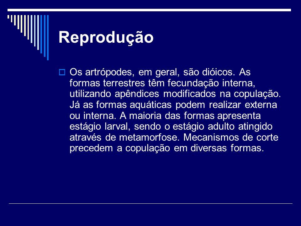 Reprodução Os artrópodes, em geral, são dióicos. As formas terrestres têm fecundação interna, utilizando apêndices modificados na copulação. Já as for