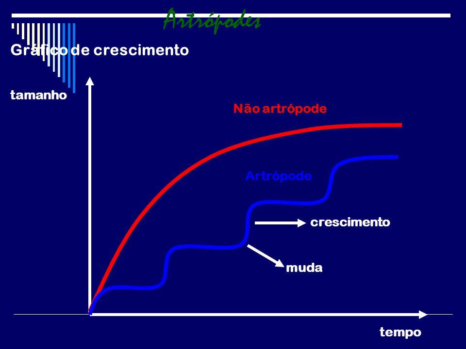 Gráfico de crescimento tamanho tempo Não artrópode Artrópode muda crescimento Artrópodes