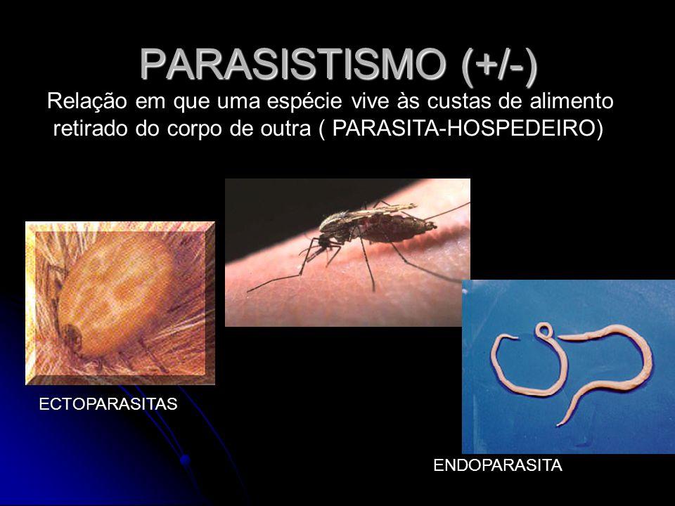 PARASISTISMO (+/-) Relação em que uma espécie vive às custas de alimento retirado do corpo de outra ( PARASITA-HOSPEDEIRO) ECTOPARASITAS ENDOPARASITA
