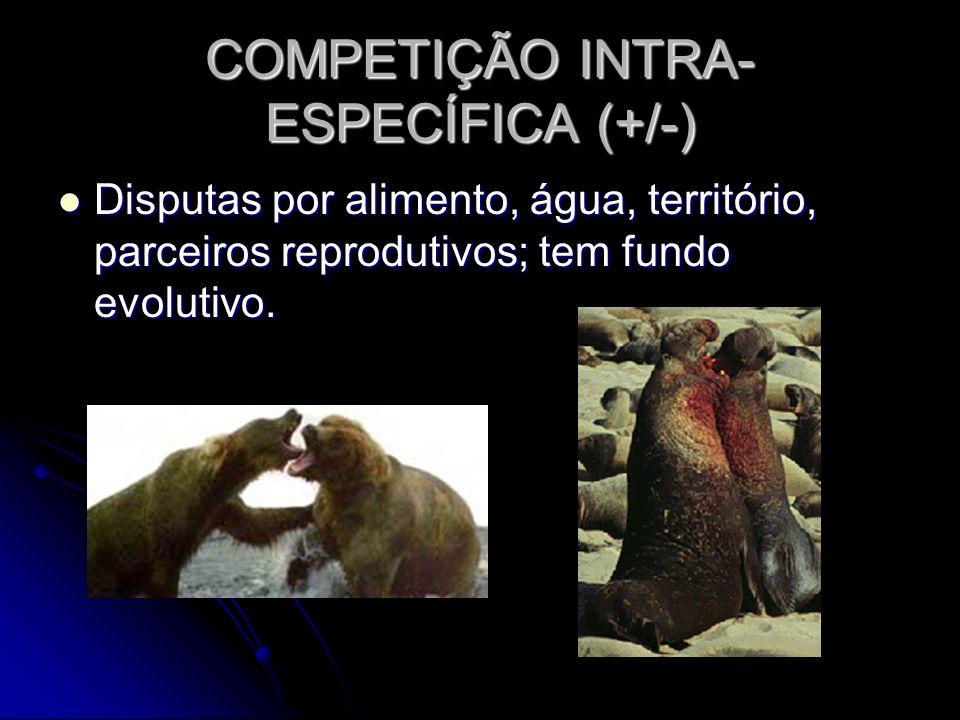 COMPETIÇÃO INTRA- ESPECÍFICA (+/-) Disputas por alimento, água, território, parceiros reprodutivos; tem fundo evolutivo. Disputas por alimento, água,