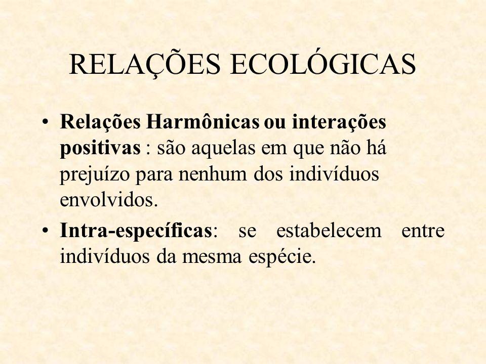 RELAÇÕES ECOLÓGICAS Relações Harmônicas ou interações positivas : são aquelas em que não há prejuízo para nenhum dos indivíduos envolvidos. Intra-espe