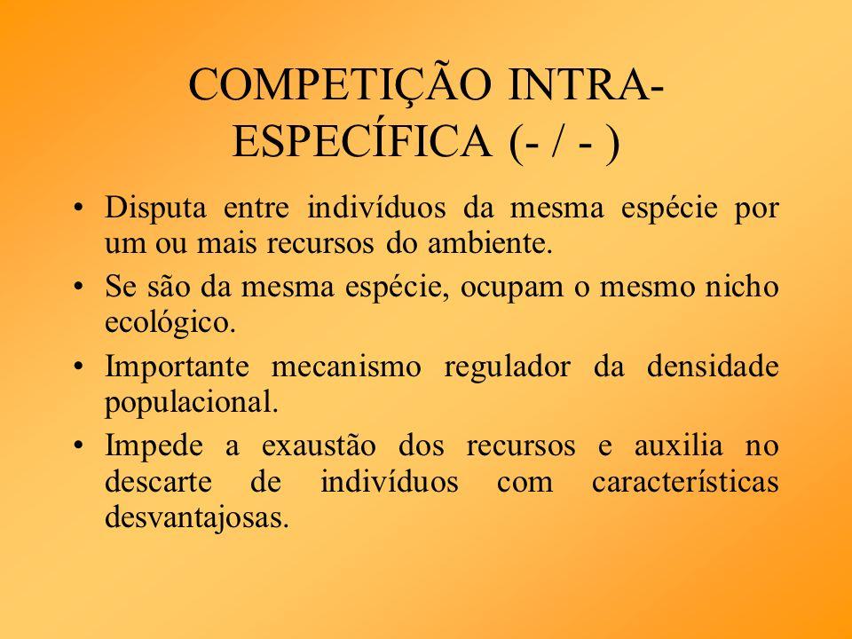 COMPETIÇÃO INTRA- ESPECÍFICA (- / - ) Disputa entre indivíduos da mesma espécie por um ou mais recursos do ambiente. Se são da mesma espécie, ocupam o