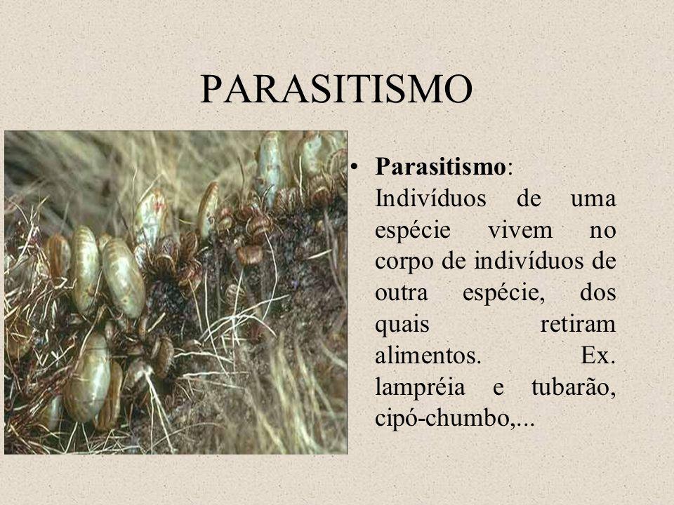 PARASITISMO Parasitismo: Indivíduos de uma espécie vivem no corpo de indivíduos de outra espécie, dos quais retiram alimentos. Ex. lampréia e tubarão,
