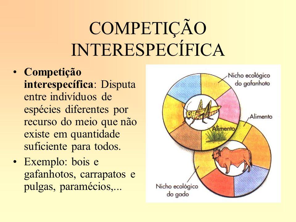 COMPETIÇÃO INTERESPECÍFICA Competição interespecífica: Disputa entre indivíduos de espécies diferentes por recurso do meio que não existe em quantidad