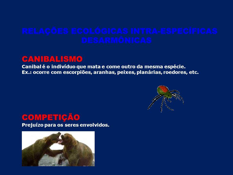 RELAÇÕES ECOLÓGICAS INTRA-ESPECÍFICAS DESARMÔNICAS CANIBALISMO Canibal é o indivíduo que mata e come outro da mesma espécie.