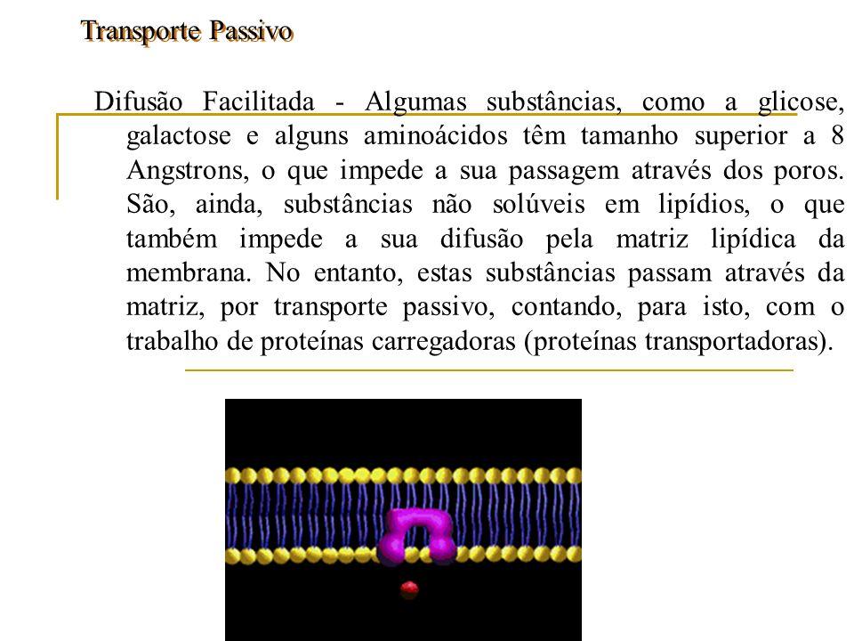 Osmose - Osmose - (osmos= empurrar) É um fenômeno de difusão em presença de uma membrana semipermeável.