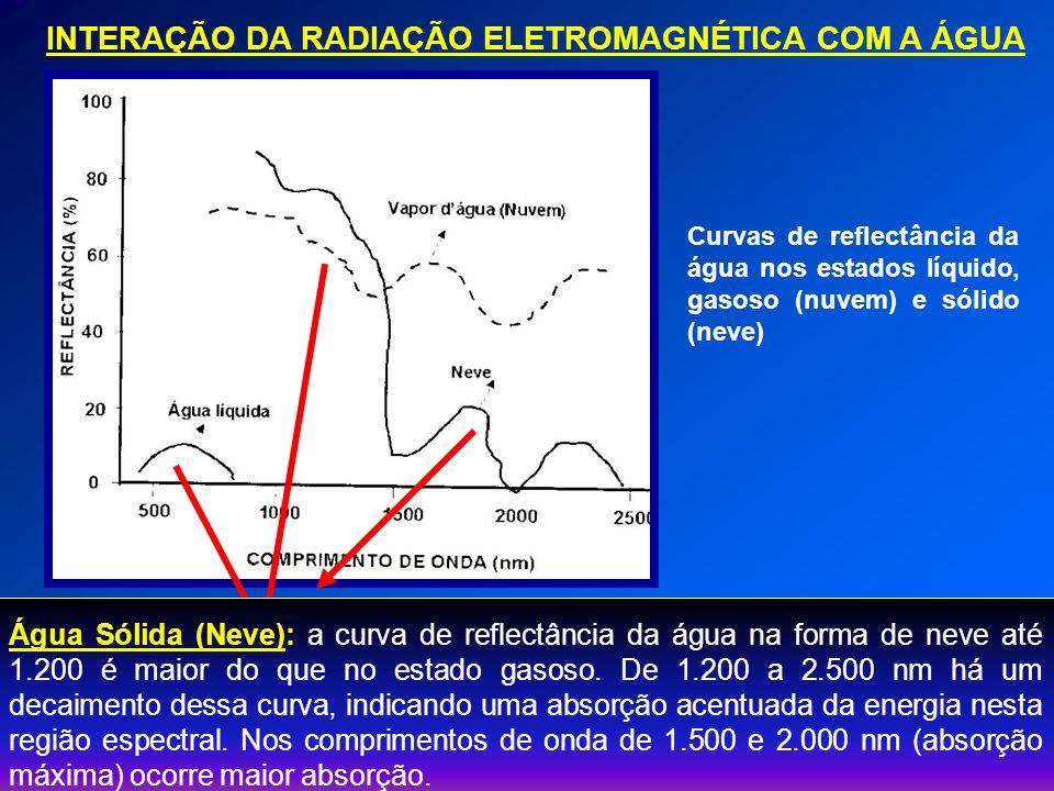 FATORES QUE INTERFEREM NA REFLECTÂNCIA DA ÁGUA Matéria Orgânica Partículas Minerais Inorgânicas Fitoplâncton O fitoplâncton é responsável pela absorção de MO, por meio da utilização de nutrientes inorgânicos e energia solar (fotossíntese).