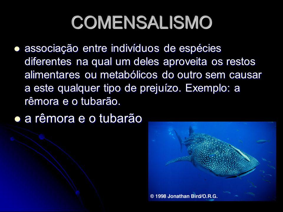 COMENSALISMO associação entre indivíduos de espécies diferentes na qual um deles aproveita os restos alimentares ou metabólicos do outro sem causar a
