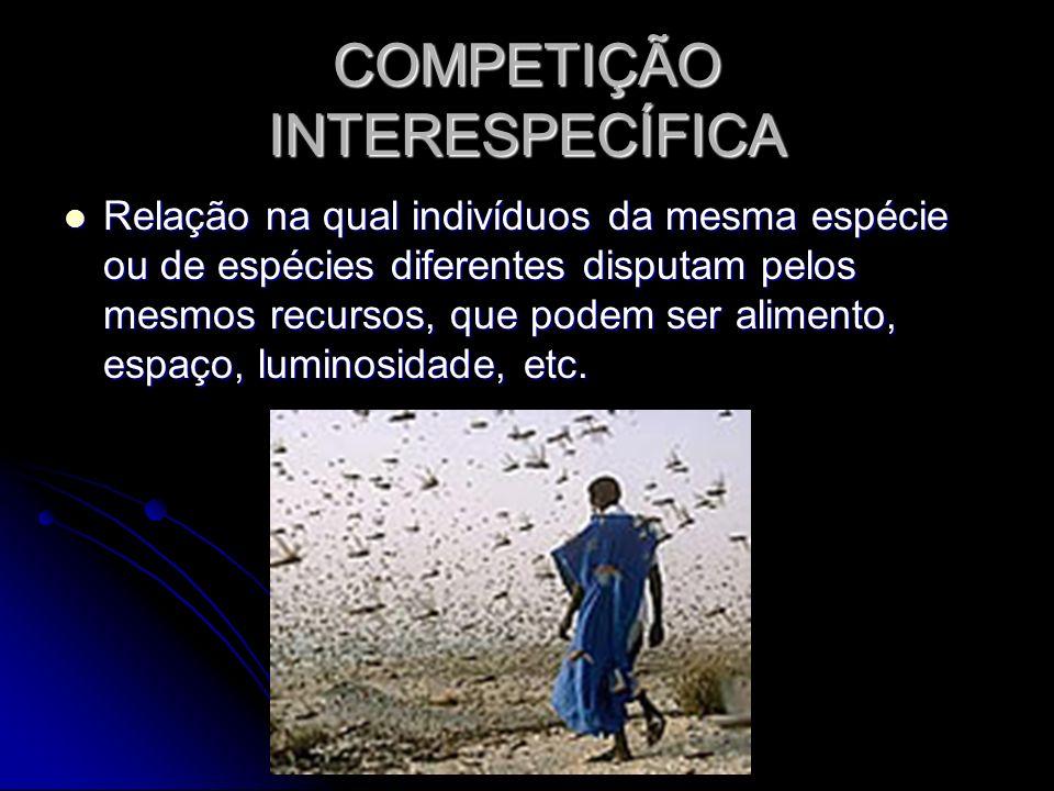 COMPETIÇÃO INTERESPECÍFICA Relação na qual indivíduos da mesma espécie ou de espécies diferentes disputam pelos mesmos recursos, que podem ser aliment