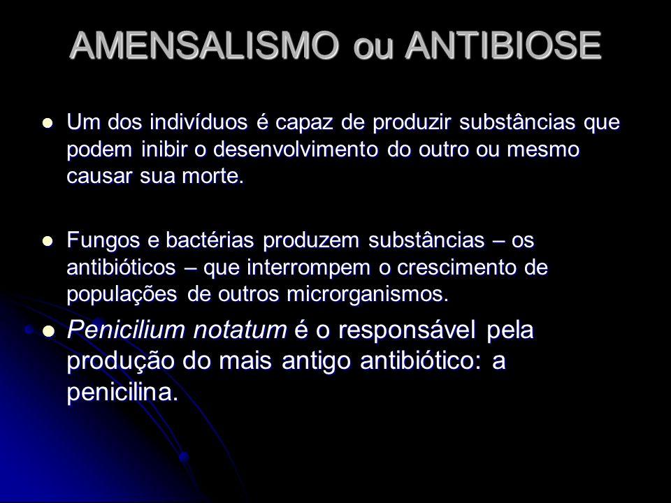AMENSALISMO ou ANTIBIOSE Um dos indivíduos é capaz de produzir substâncias que podem inibir o desenvolvimento do outro ou mesmo causar sua morte. Um d