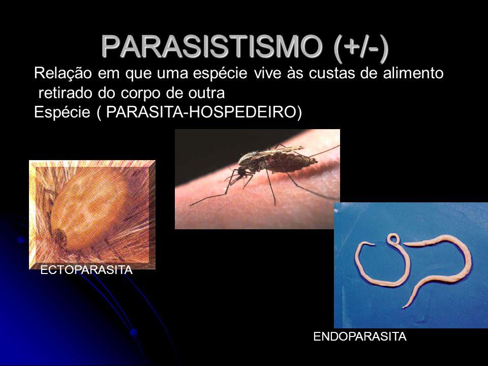 PARASISTISMO (+/-) Relação em que uma espécie vive às custas de alimento retirado do corpo de outra Espécie ( PARASITA-HOSPEDEIRO) ECTOPARASITA ENDOPA