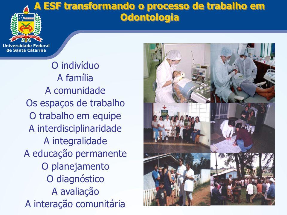 A ESF transformando o processo de trabalho em Odontologia O indivíduo A família A comunidade Os espaços de trabalho O trabalho em equipe A interdiscip
