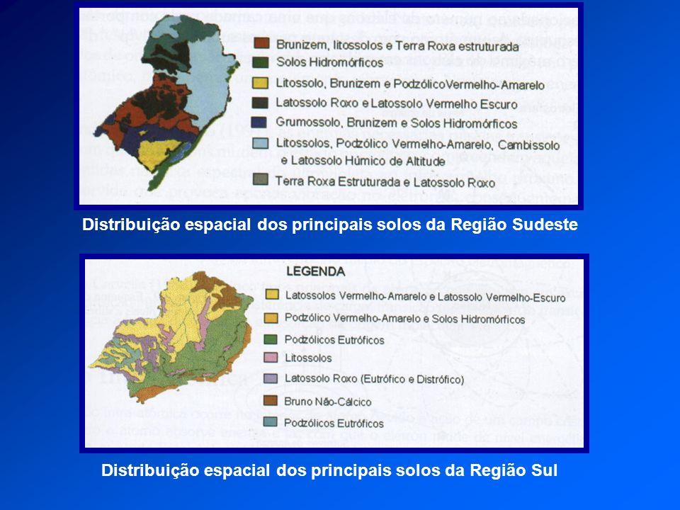Distribuição espacial dos principais solos da Região Sudeste Distribuição espacial dos principais solos da Região Sul