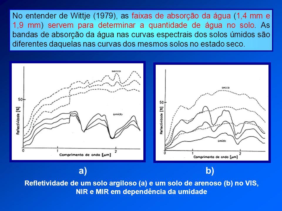No entender de Wittje (1979), as faixas de absorção da água (1,4 mm e 1,9 mm) servem para determinar a quantidade de água no solo. As bandas de absorç