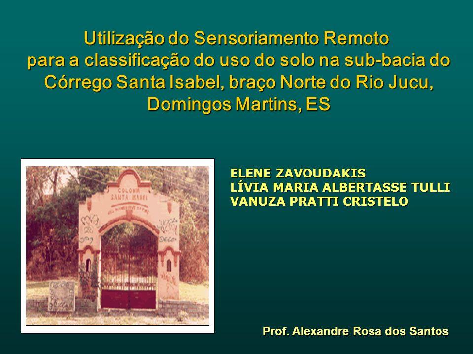 SUMÁRIO SUMÁRIO Introdução Justificativa Objetivo Revisão Bibliográfica Metodologia Resultados Conclusões