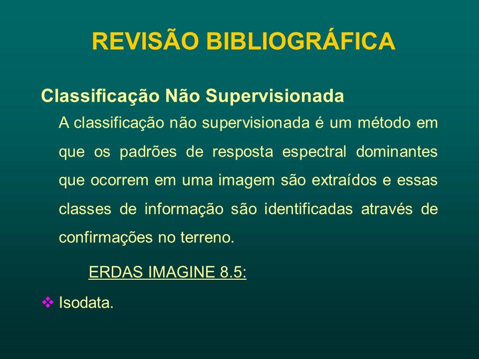 REVISÃO BIBLIOGRÁFICA Classificação Supervisionada A classificação supervisionada utiliza algoritmos cujo reconhecimento dos padrões espectrais na imagem se faz com base numa amostra de treinamento que é fornecida pelo sistema de classificação pelo analista.